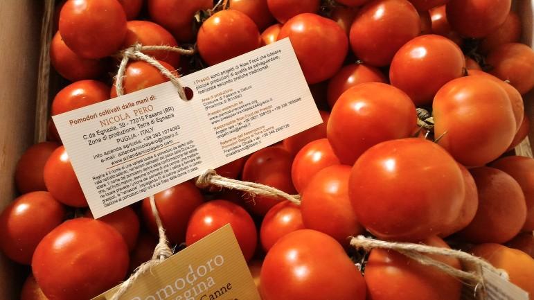 AZIENDA AGRICOLA NICOLA PERO produttore Pomodori Regina di Torre Canne presidio Slow Food